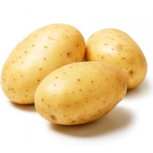 Картофель возвращен в Белоруссию